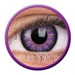 ColourVUE Glamour Violet